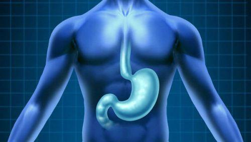 Что показывает рентген желудка с барием: подготовка, как проводится, последствия, цена, отзывы