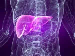 Хронический аутоиммунный гепатит: симптомы, причины, диагностика, лечение