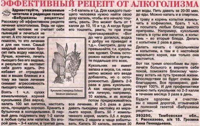Трава кукольник от алкоголизма: достоинства и недостатки, инструкция, отзывы