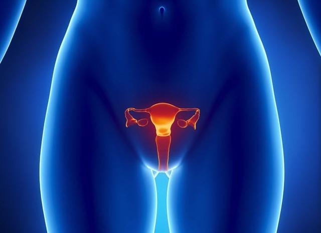 Фиброма матки: симптомы, причины, лечение народными средствами, операционное удаление, фото