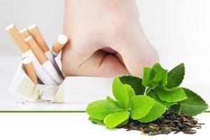 Спрей от курения Антиникотин Нано: инструкция, состав, производитель, отзывы