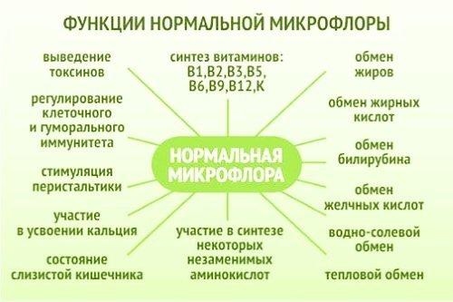 Эшерихиоз: возбудитель, этиология, симптомы, классификация, диагностика, лечение, профилактика
