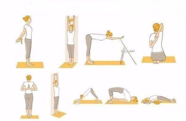 Упражнения для красивой осанки в домашних условиях: коррекция и исправление