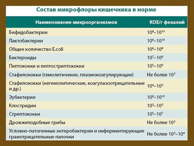 Энтерококки в кале у ребенка и взрослого: причины, повышены, понижены, нормы, лечение