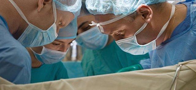 Трансплантация (пересадка) трупной или родственной почки: показания, противопоказания, реабилитация, продолжительность жизни