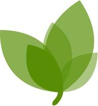 Спина Бифида: особенности состояния, причины, прогноз