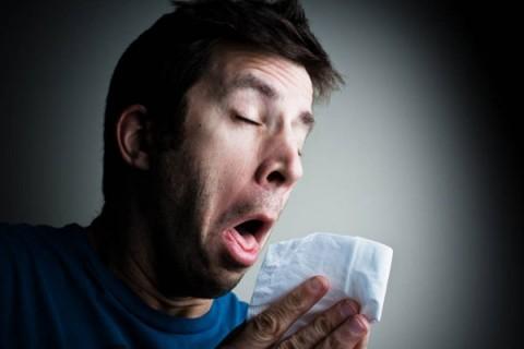 Чихание и насморк без температуры: причины приступов, средства избавления