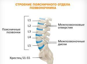 Фораминальная грыжа: задняя, левосторонняя, поясничного межпозвоночного диска l4, l5, шейного c3, c4, c5, c6
