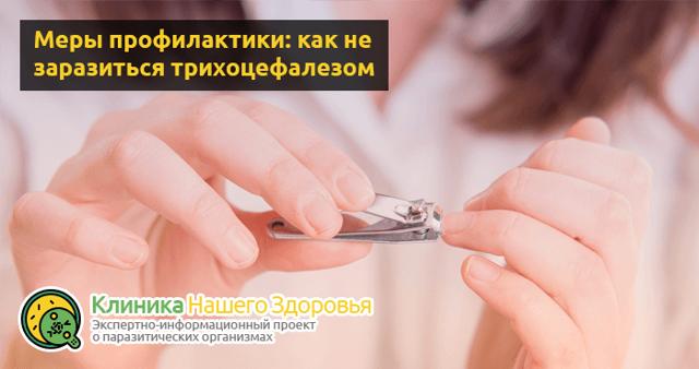 Трихоцефалез: возбудитель, фото, симптомы у взрослых и детей, диагностика, лечение, профилактика