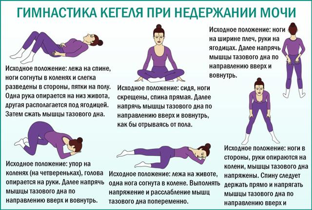 Упражнения Кегеля и гимнастика при недержании мочи у женщин: как выполнять, противопоказания