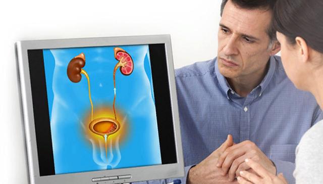 УЗИ мочевого пузыря у мужчин, женщин и детей: что показывает, как подготовиться, как делается, норма