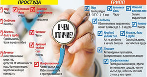 Чем отличается грипп от ОРВИ и простуды: симптомы, особенности