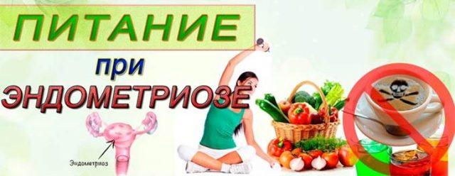 Эндометриоз кишечника: симптомы и лечение, отзывы, фото, диагностика, диета