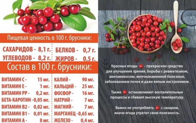 Ягоды и листья брусники для лечения почек: показания, полезные свойства, рецепты, противопоказания