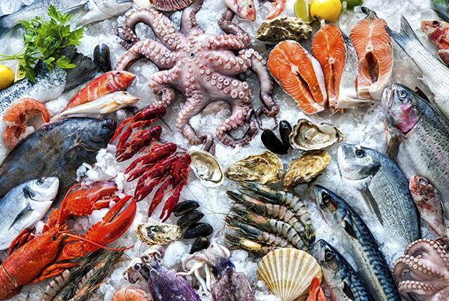 Что нельзя и что можно есть при подагре, полезно ли: сало, яйца, сыр, каши, рыба, творог, кальмары, мясо, тофу, колбаса, морепродукты
