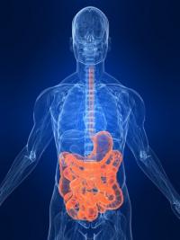 Цинкит: как быстро и эффективно устранить недостаток в организме цинка