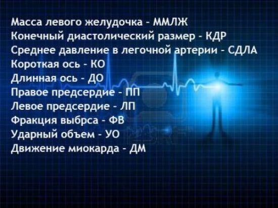 ЭхоКГ сердца: нормальные показатели, цена, расшифровка, результаты
