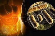 Туберкулез гортани, горла, носа: симптомы, первые признаки, лечение