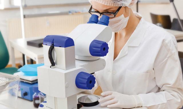 Что показывает биопсия желудка: расшифровка результатов, отзывы, цены, сколько делается анализ?