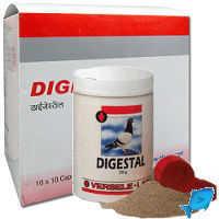 Таблетки Дигестал: состав, показания, инструкция по применению, цена, аналоги, отзывы