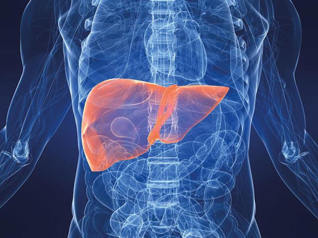 Чистка кишечника в домашних условиях: слабительное средство, магния сульфат, салат щетка, сорбенты