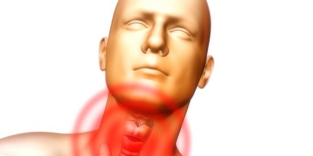 Что показывает УЗИ горла, гортани и щитовидной железы: зачем его делают